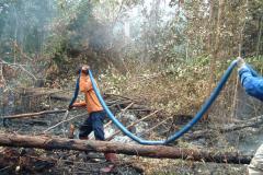 Peatland Management in SE Asia